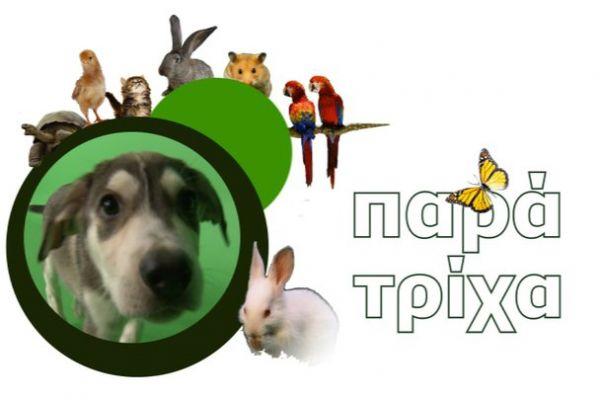 Παρά τρίχα - Η πρώτη ελληνική εκπομπή για τα κατοικίδια
