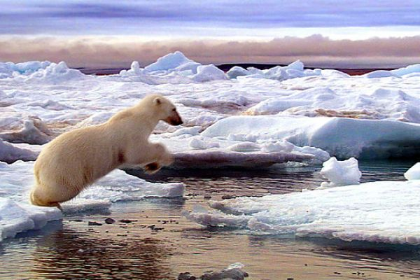 Τα μεγάλα θαύματα της Φύσης - Σειρά ντοκιμαντέρ για το πώς οι εποχικές αλλαγές επηρεάζουν ένα πολύ μεγάλο πληθυσμό ζώων